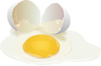 Опыты с яйцом