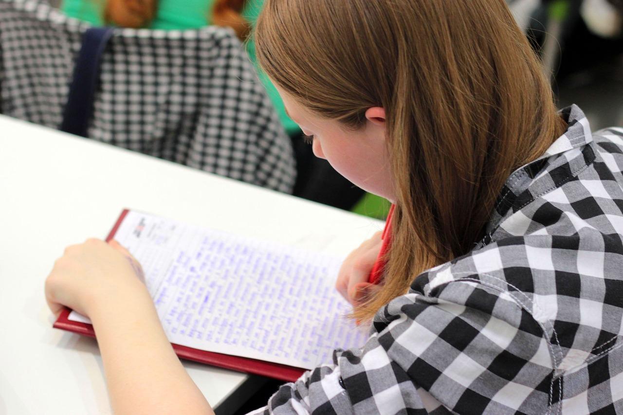 Для чего нужен план сочинения для ЕГЭ по русскому языку, клише для сочинения