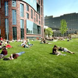 Обучение в Голландии: особенности поступления, учебы, трудоустройства